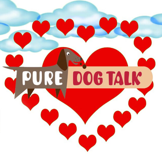 Pure Dog Talk | Video Animation