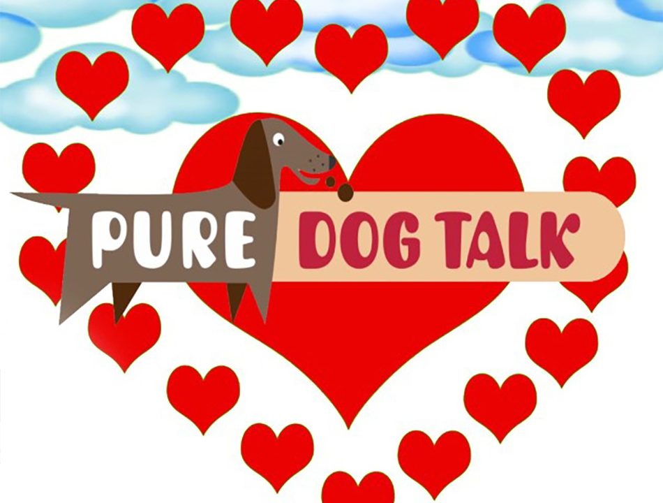 Pure Dog Talk Podcast